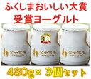 【クール便での発送】金子牧場 食べると幸せゴールデンヨーグルト 大(480g)×3個セット