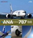 ansx-50008