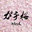 ■湘南乃風 CD【ガチ桜】10/2/10発売【楽ギフ_包装選択】【05P03Sep16】