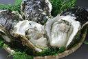 岩牡蠣(大)8個(83-C)