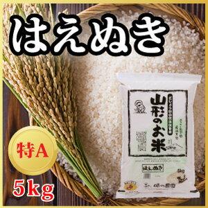 【29年産米】山形県産 はえぬき 5kg(10-A3)