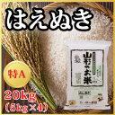 【29年産米】山形県産 はえぬき 20kg(5kg×4)(1...