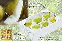 山形の洋梨 極上大玉シルバーベル 約3kg 化粧箱入(07-F)