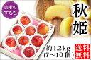 秋姫 約1.2kg/7〜10個(08-G)