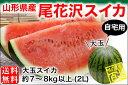 大玉スイカ ご自宅用 約7〜8kg/2Lサイズ(02-Y)