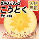 山形りんご こうとく 約1.5kg(09-I)