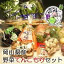 【全て岡山県産】たっぷり野菜10点以上入ります!岡山野菜セット10点以上てんこ盛り 05P03Sep16