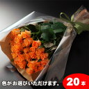 【送料無料】バラの花束ギフト20本 05P03Sep16