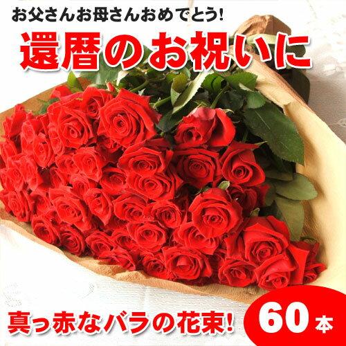 【送料無料】還暦祝いに赤いバラの花束ギフト60本!生産者直送だからバラの鮮度が違う!還暦の赤い薔薇ならこれ 還暦祝い 記念日 産地直送の薔薇 生産者直のばら 鮮度の良いバラ 05P03Sep16
