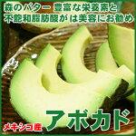 美のフルーツ!森のバターメキシコ産アボカド5kg30玉