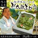 【送料無料】物部さんの桃太郎ぶどう2〜4房2kg箱 05P03Sep16
