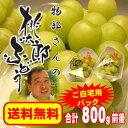 【送料無料】皮ごと食べられて種もない物部さんの【ご自宅用】桃太郎ぶどう合計800g前後