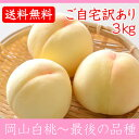 岡山白桃 最後の品種 ご自宅訳あり 3Kg 8〜11玉 栽培園限定商品 送料無料 希少品のため収穫予定数量完売と同時に販売終了致します