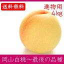 岡山白桃 最後の品種 進物用 4Kg 10〜15玉 栽培園限定商品 送料無料 希少品のため収穫予定数量完売と同時に販売終了致します