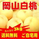 岡山白桃 ご自宅用訳あり 3Kg 8〜11玉 岡山白桃物語 ...