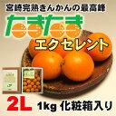 【送料無料】宮崎産完熟金柑(きんかん)の最高峰「たまたまエクセレント」2Lサイズ1kg化粧箱
