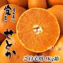 【送料無料】スーパー柑橘せとか【ご自宅用】5Kg箱 05P03Sep16