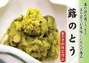 【春の季節限定商品】味の顔見世 季寄せ 蕗のとう(ふきのとう) 100g