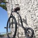 走行可能な[ だるま自転車 ]【 QU-AX G-bike 】 変わった自転車