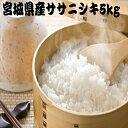 【送料無料】 米 5kg 白米 ササニシキ 一等米 宮城県産 令和元年産 /5kg×1袋/