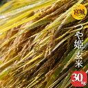 玄米 宮城県産 つや姫 玄米 30kg 1袋 検査一等米  令和元年産 送料無料