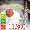 29年産 宮城県産 ひとめぼれ 30kg (10kg 3袋)...