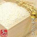 宮城県産 ササニシキ 5kg 令和元年産 送料無料 お米 精白米