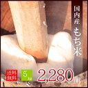 【送料無料】国内産 もち米5.0kg ---簡易梱包--- おてんとさん/送料無料