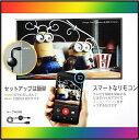 【google chromeca...