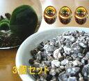 マリモのエサ【ミネラル鉱石缶詰】3個セット