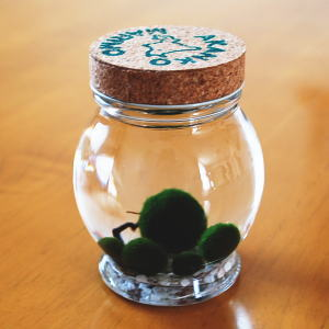 アクアリウム ガラス瓶 グリーン