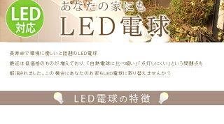 【送料無料】アイリスオーヤマLED電球人感センサー付mini昼白色(325lm)・電球色(250lm)LDA4N-H-S4・LDA4L-H-S4【RCP】【0530in_ba】26口金一般電球led照明器具led照明消費電力長寿命E26【◆zk】[Yep_100]【532P15May16】【あす楽】