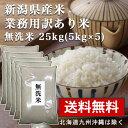 【業務用米 無洗米 25kg(5kg×5)】 生活応援 期間限定 数量限定 新潟産 25キロ 業務用米 送料無料