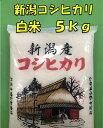 【白米 5kg 新潟コシヒカリ】最安値 訳あり 未検査 30年産