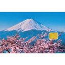 SoftBank Prepaid SIM for Travel セット (MF1) ZGP939
