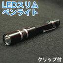 【パイナップル】LEDスリムペンライト ブラック
