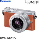 LUMIX DMC-GM1K レンズキット アイテム口コミ第9位