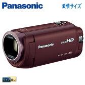 パナソニック デジタルビデオカメラ 32GB ワイプ撮り HC-W570M-T ブラウン 【送料無料】【KK9N0D18P】