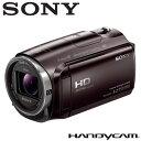 ソニー ビデオカメラ ハンディカム 32GB HDR-CX670-T ボルドーブラウン 【送料無料】【KK9N0D18P】