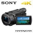 SONY デジタルビデオカメラ ハンディカム 4K 64GB FDR-AX55 4Kハンディカム【送料無料】【KK9N0D18P】