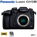 樂天商城 - パナソニック ミラーレス一眼カメラ ルミックス LUMIX Gシリーズ GH5S ボディ DC-GH5S【送料無料】【KK9N0D18P】