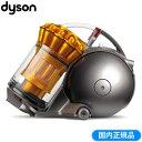 ダイソン 掃除機 DC48 タービンヘッド サイクロン式クリーナー DC48THSY アイアン/サテンイエロー 【送料無料】【KK9N0D18P】
