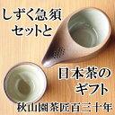 バレンタイン お茶 しずく茶急須(ひとしずく急須)と湯飲み日本茶のギフトセット(amg)お祝い・内祝い・御礼【1612RFD】