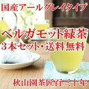 アールグレイティーバッグ緑茶 国産茶葉使用 ベルガモット緑茶 3本セット ティーバッグ緑茶 煎茶 メール便(DM便)送料無料(am-m)