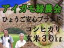 【送料無料】平成28年産!「アイガモ米」玄米30kg 農薬や化学肥料を一切使わない栽培方法のコシヒカリ100% あいがも米 合鴨米