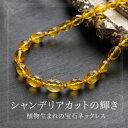 【天然琥珀】【j542】琥珀 こはく ネックレス【パワーストーン】【Sランク】【送料無料】