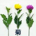 【造花 仏花】キク / きく 菊 | 990001 / FF-2775 / FF-2828 / FF-2801