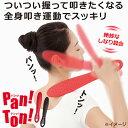 Pan!Ton!(パンッ!トンッ!) 【肩たたき/肩叩き/肩たたき棒/マッサージ/肩こり/パントン/パンットンッ/panton】