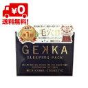 【送料無料】ゲッカ スリーピングパック GEKKA SLEEPING PACK 4560302210010