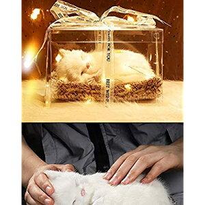 プレゼント 誕生日プレゼント 人気 可愛い 猫 ぬいぐ